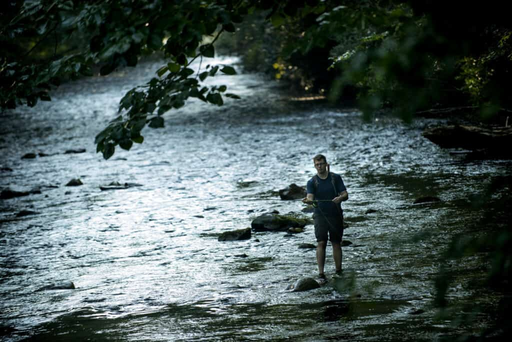 What Can I Catch By Fly Fishing In A Stream?