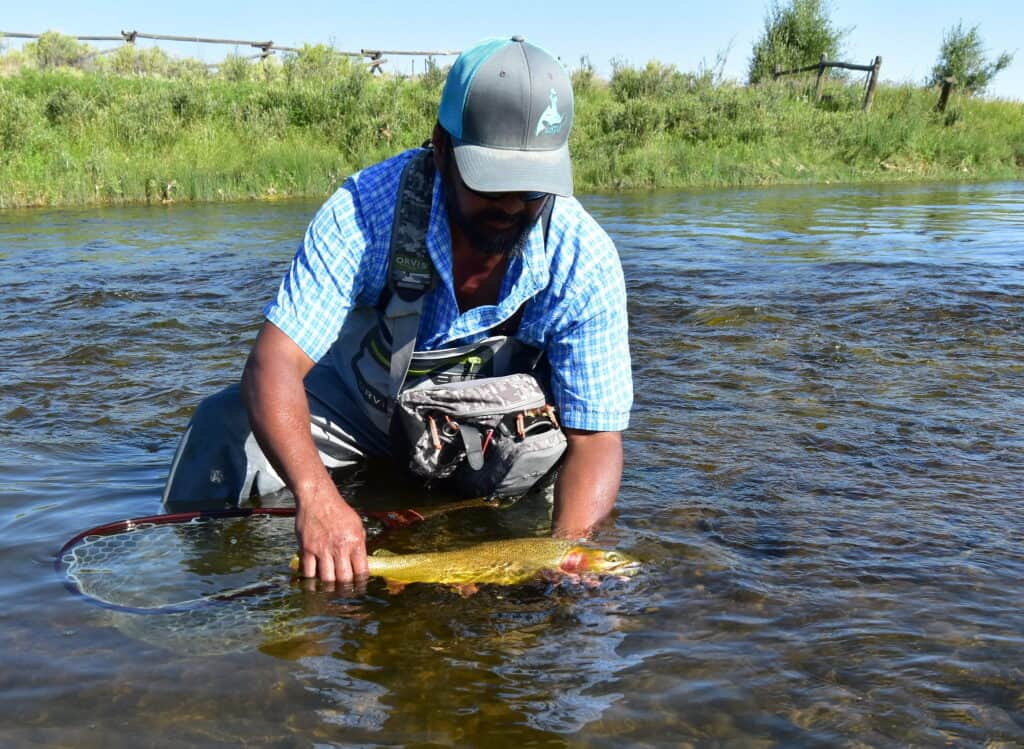Catching brown trout in Montana