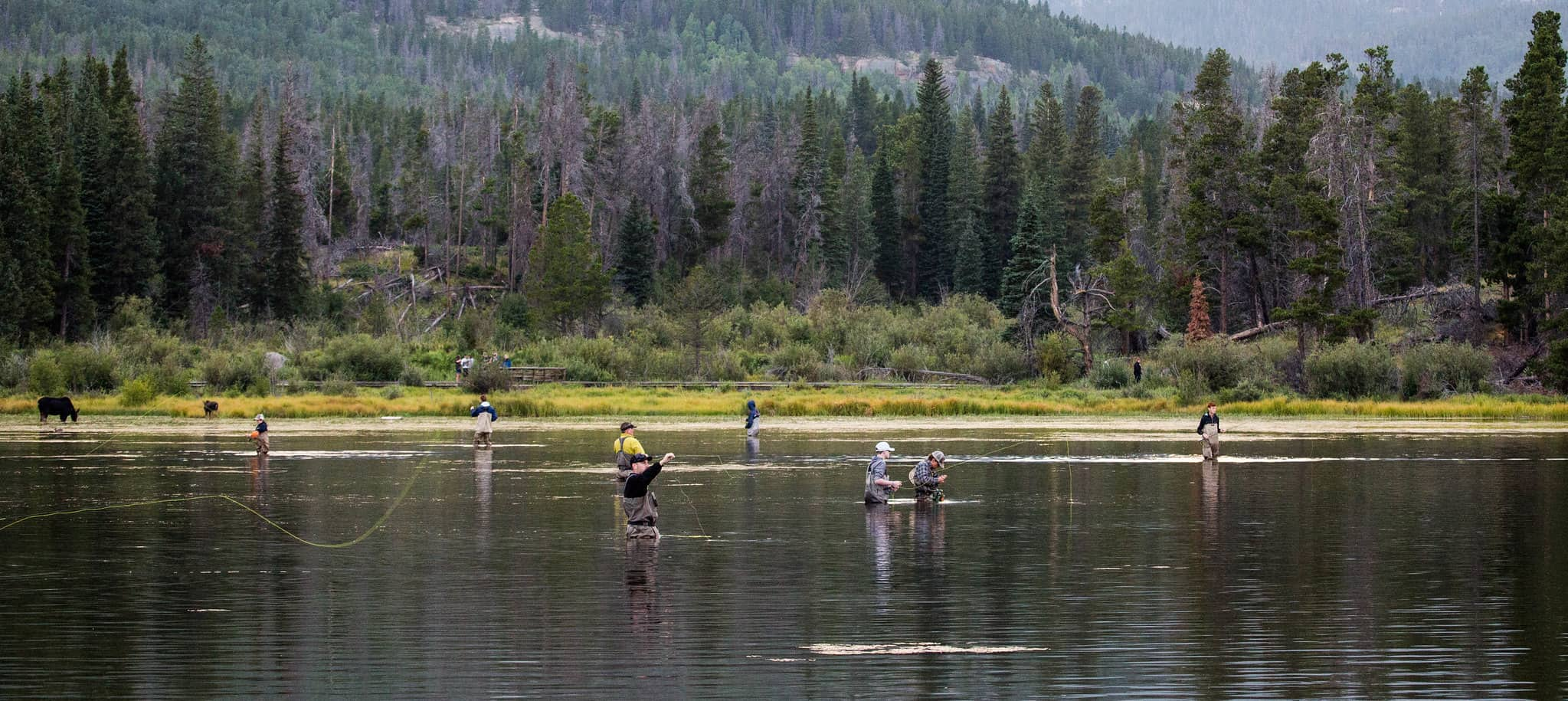 Beginners Fly Fishing Destinations