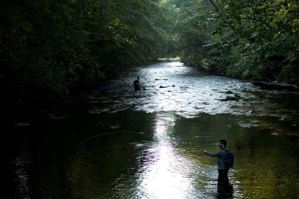 Beginners Fly Fishing Destinations In New York