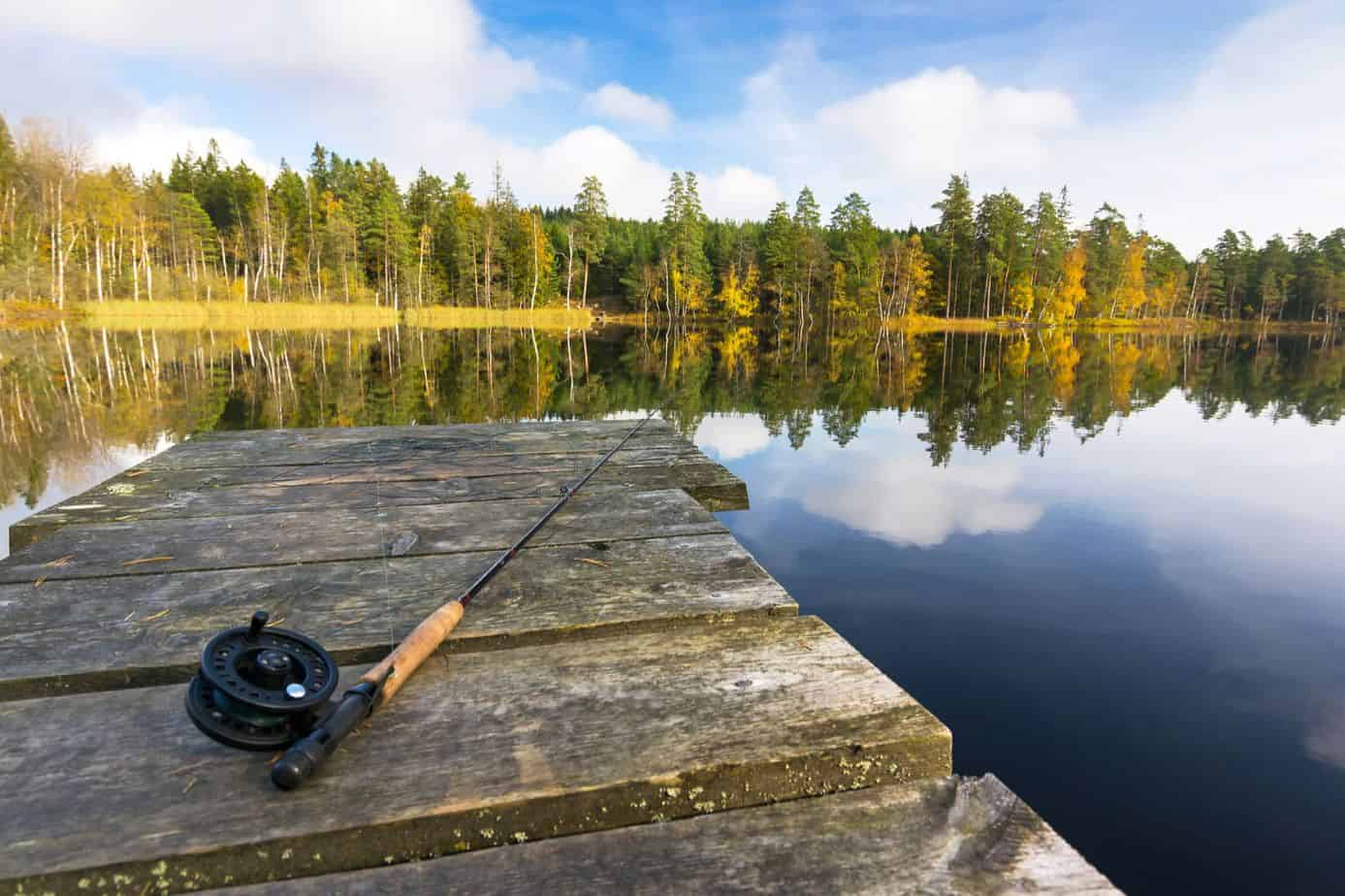 Best Trout Fishing in New Hampshire