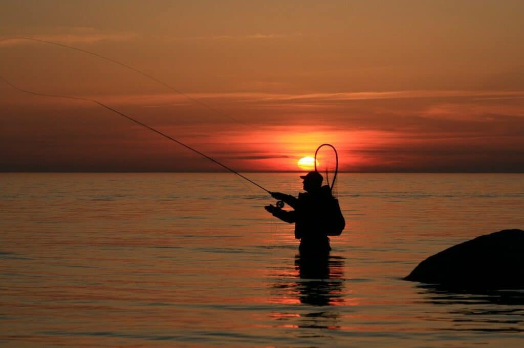 Best Freshwater Fly Fishing in Florida