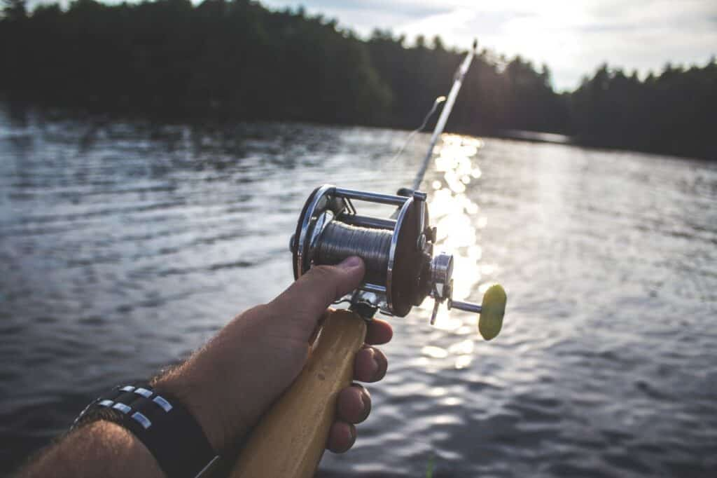Are Muskies Good To Eat?
