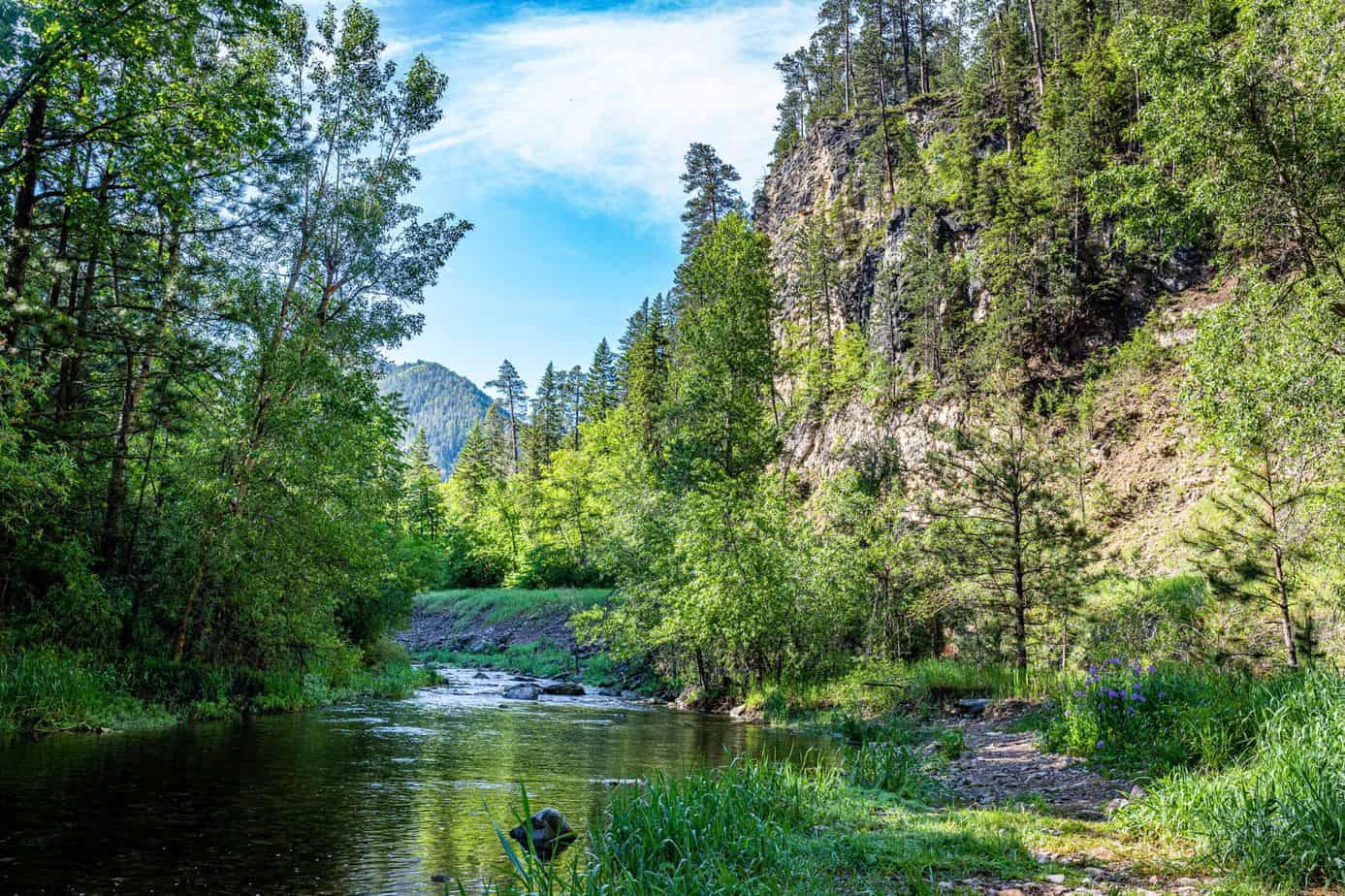 Where Is The Best Trout Fishing In South Dakota?